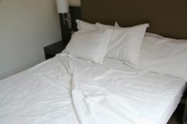 Sábana blanca EXTRA (50% algodón-50% poliéster) y CARDA (100% algodón)